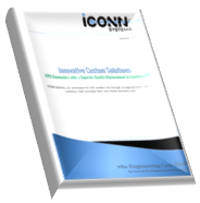 Download iCONN Systems' Innovative Custom Solutions Case Study